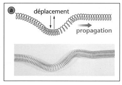 Séries d'exercices corrigés Les ondes mécaniques pdf
