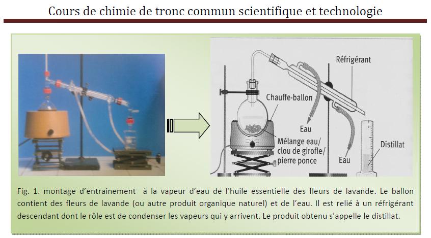 Cours de chimie de tronc commun scientifique et technologie