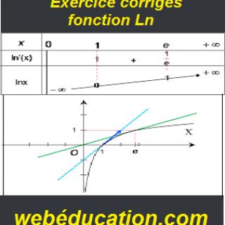 Exercices corrigés fonction Ln pdf