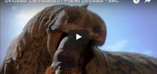 Dinosaur Cannibalism