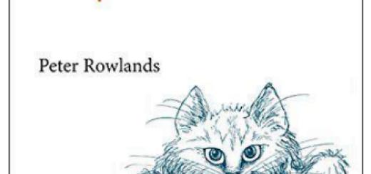 How Schrodinger's Cat Escaped The Box pdf