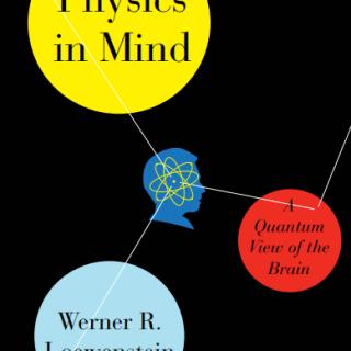 Physics in Mind A Quantum View of the Brain pdf