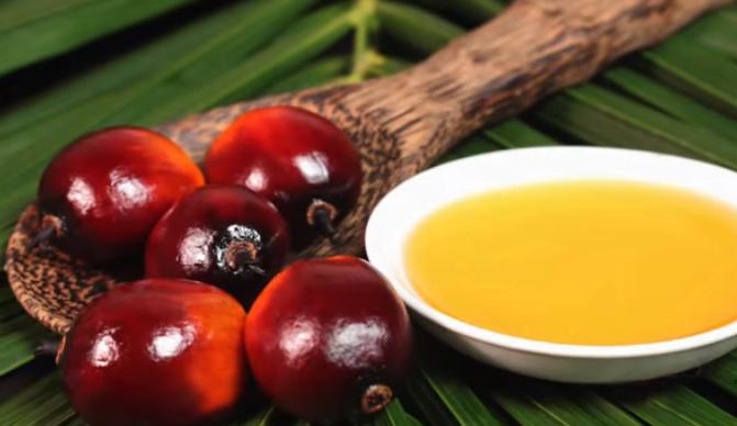 Palm Oil vs Coconut Oil Health Benefits
