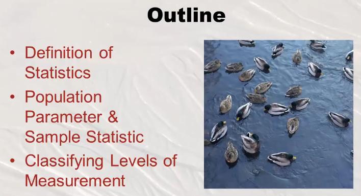 Statistics full Course for Beginner